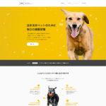 IVS JAPAN WEB